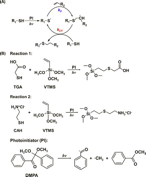(A) Scheme for the simplified mechanism of the