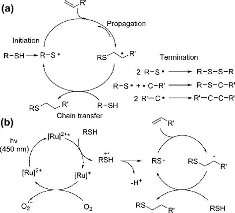 (a) Mechanism of radical mediated thiol−ene click reaction