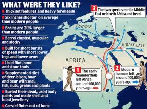 Neanderthal DNA reveals our ancestors DID interbreed with