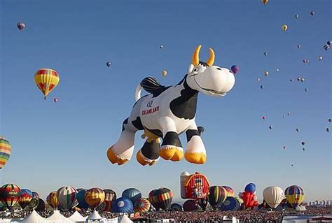 HQ Wallpapers: Awesome Hot air Balloons Designs