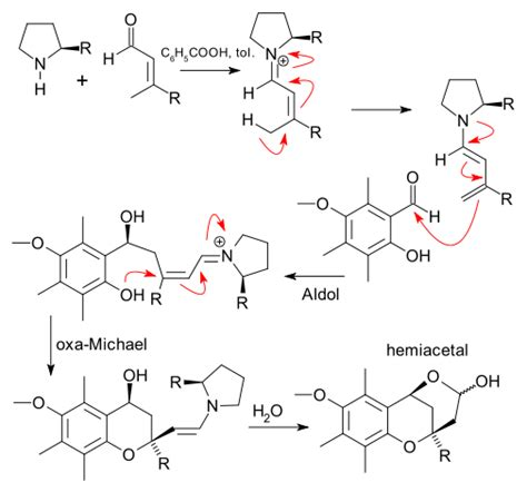 NNNS chemistry blog: Synthetic methods: Oxa-Michael addition