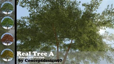 Real Tree A (S4C)   SimsWorkshop